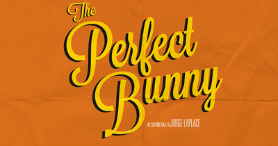 THE PERFECT BUNNY - CORTOMETRAJE (NOTODOFILM, 2013)
